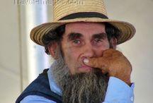Amish and Mennonites  / by Lori Krenos