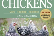Chickens / Chicken books, products, ideas, etc. / by Chris Koester