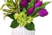 Florals / by Melissa Batto
