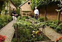 My new garden / by Monica Michelle