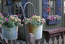 garden / by Sandy Mennenga