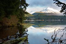 Alaska / by Alishea Hixson