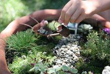 Miniature Fairy Gardens / Fun miniature gardens  / by Garden Design