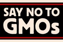 Say NO to GMOs / by Lynda Atchison