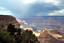 Arizona . . . from My Point of View / by Carol Cox