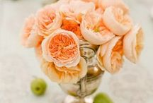 Flowers / by Jessica Jaret Sant
