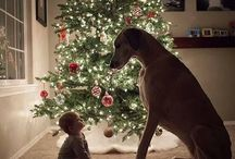 baby and dog / by Halley Walker