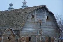 Barns / by Interiors 360 Lisa Springer