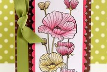 Scrapbook Layouts/Cards/Tags / by Nati J