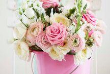 Flowers / by Brooke Sloan