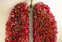 E vejo flores em você.. / by Wênya Dantas