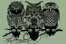 owls / by Jane Schichi