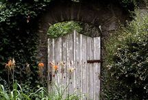 Old-or-not Gates / by wags