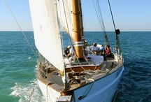 Hoist The Main! / Sailing and Waters / by itweetArt / Alissa Fereday