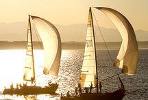 Row Row Row Your Boat / by Debbie Watson