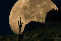 Moon Shots, Sunrises, Sunsets, and other cool phenomenon in the sky/nature. / No astronauts, just beautiful photos of the moon, sun, the sky above and various shots highlighting the natural beauty of our planet.  / by Andy Anderson
