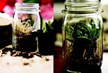 "DIY: Mason Jars / by Anne ""ArizoNative"""