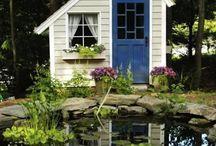 Pond / by Brooke Bowman Bachtel