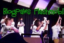 BlogPaws 2012 / by Theresa O'Connell