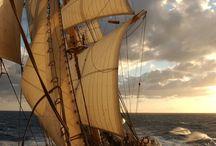 Sailing / by Lynette E.