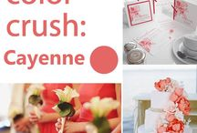 Colour Crushes / Find our latest Wedding Colour Crushes in this board!  / by Bride & Groom Direct