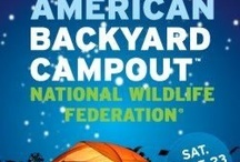 Backyard Campout / by MaryJo Boyus