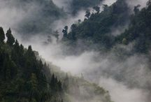 Sikkim,Gangtok,india / by Keshav D