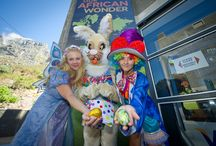 Easter in Cape Town / Things to do in Easter in Cape Town. Fun for the kids, things to do in the Mother City and family fun!  / by Cape Town Tourism