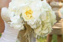 Wedding Flowers / by Asheley Burch