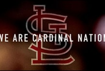 Cardinals Nation / by Alyssa Wages