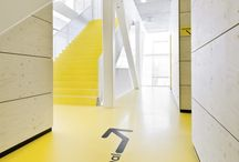 Floors / Environmental Graphics - Floors / by 3M Canada Design & Graphic Solutions