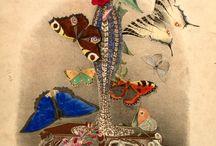 Botanicals / by Judy Mccallum