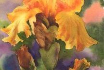 Flower Paintings  / by Deneen Azzolino