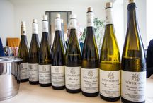 Oh the taste of wine!! / by Christine Duwel Martin