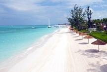 Beaches Resorts / by Grand Pineapple