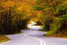 New England  / by Ally Sokolowski