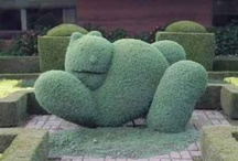 Garden Art / by Plant Care Today