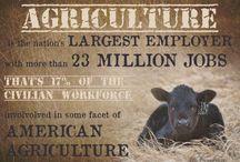 Great Graphics / by New Mexico Farm & Livestock Bureau