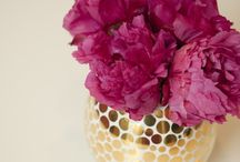 Wedding Flowers and Colors / by Laura Zenni