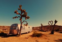 Airstream Dreamin / by Krista Fornear
