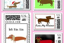Doxie lover / by Robin Smith