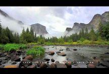 Videos worth watching.. / by Libby Jeske