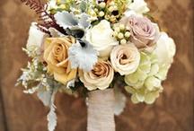 Wedding / by Jessi Krug