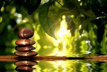 holistic mind body and soul / by Daisy Howard Kimbro