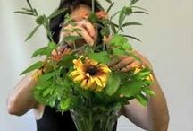 Wedding flowers / Tips, hints, How-to suggestions  / by Heidi Hepler