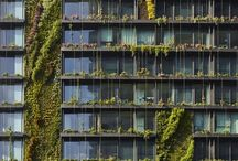 Architecture / by Jennifer Stafford
