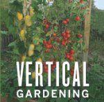 Gardening ideas / by Katie Schmitt Abbott