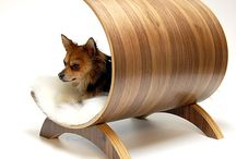 Dog Products I Love / by Karen Friesecke