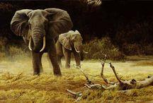 animal artists / by Doug Hiser