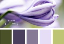 Color Scheme / Color palettes! Which colors compliment each other? / by Intricate Icings